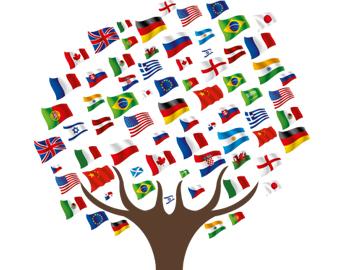 International Database